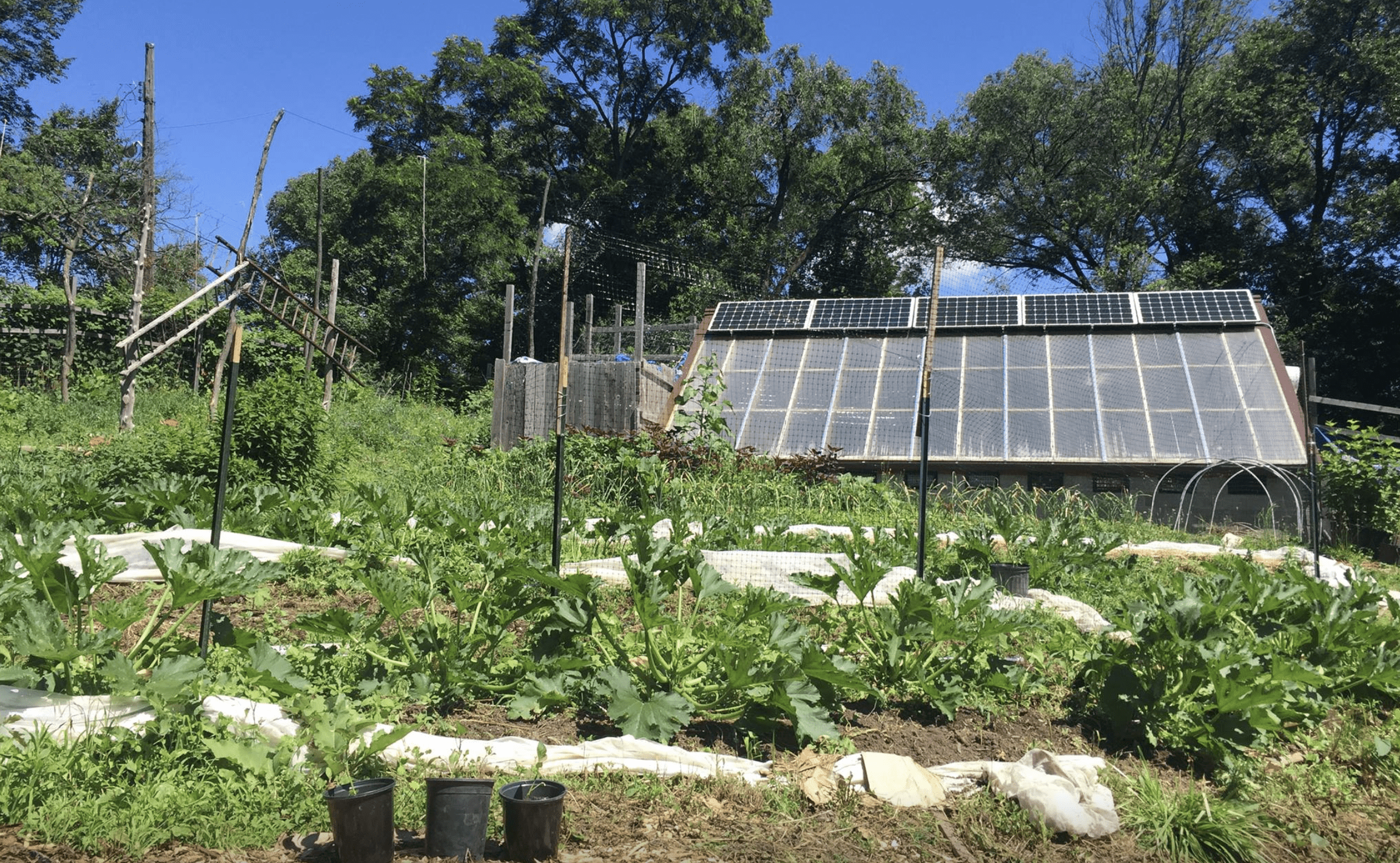 Weed Control For Small Farms [CRAFT]