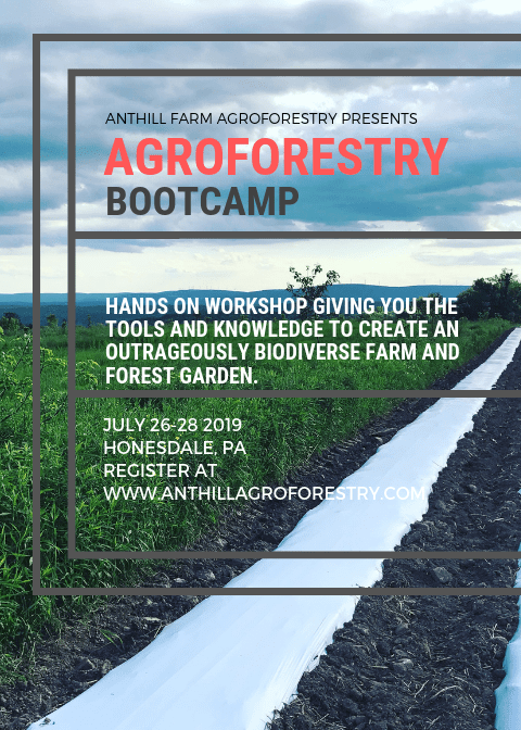 Agroforestry Bootcamp! July 27-28