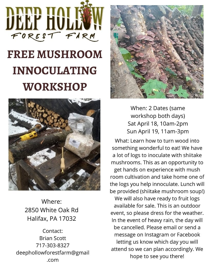 Free Shiitake Mushroom Workshop