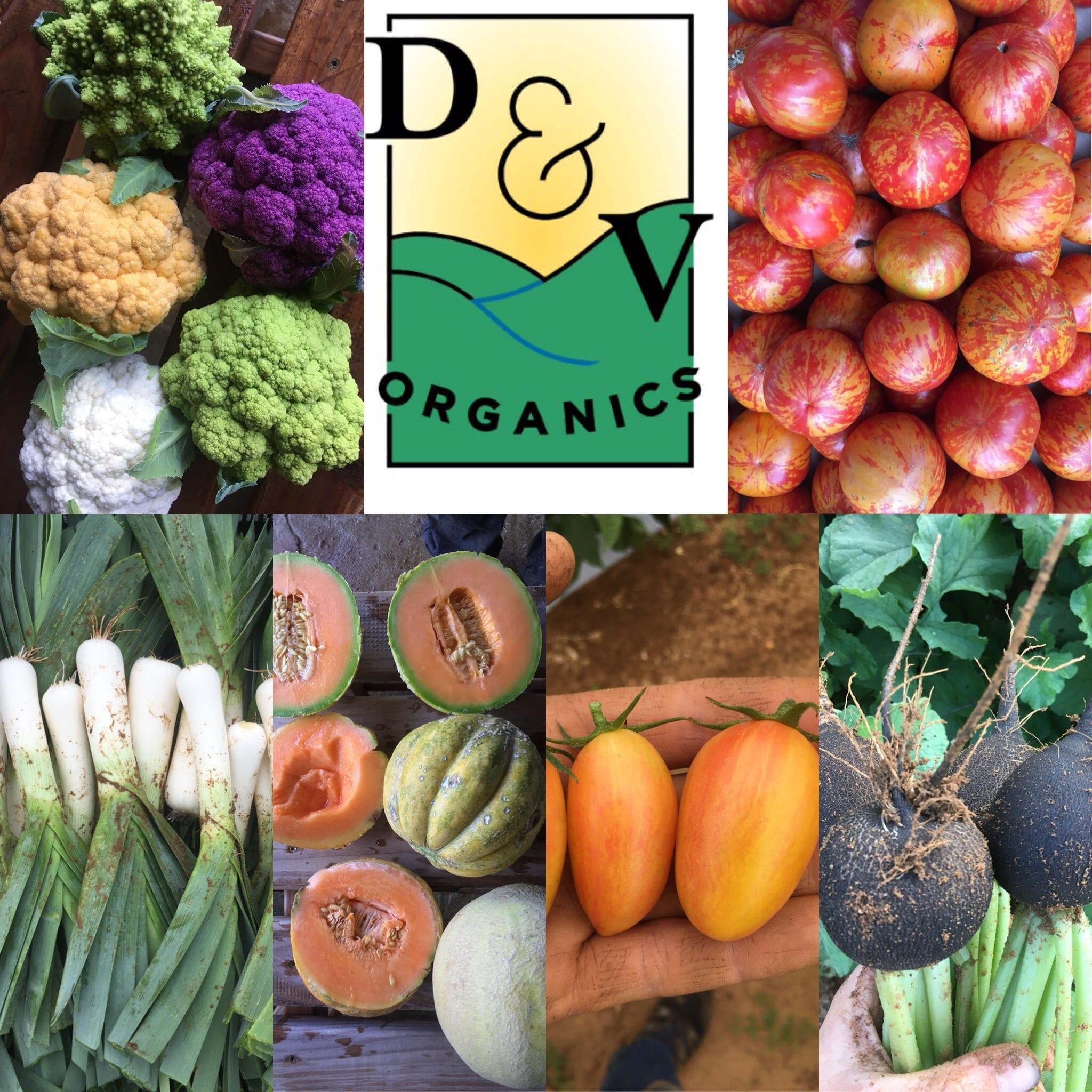 Organic Farm Job Openings