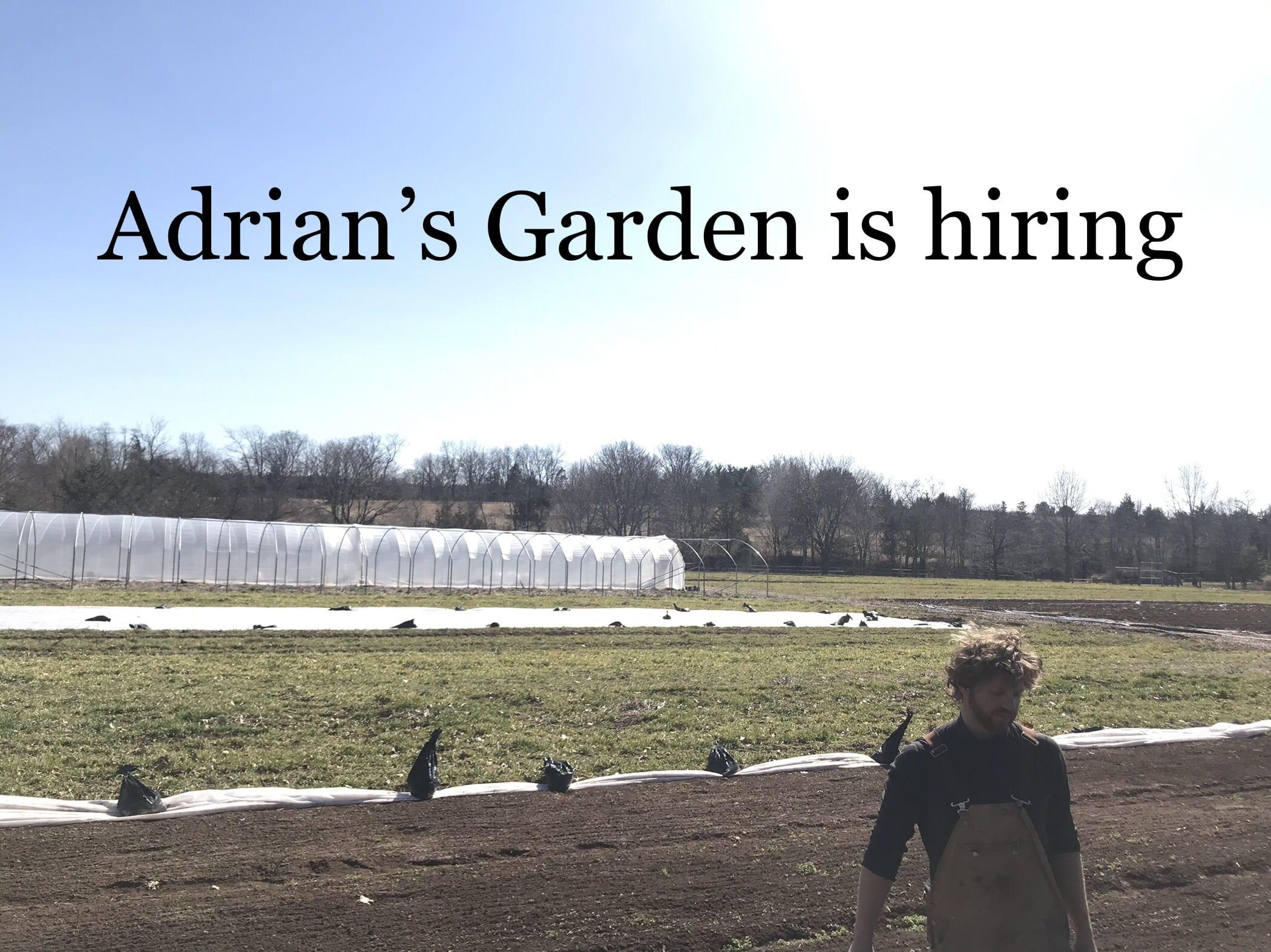 Hiring a Part-Time Farmer at Adrian's Garden, NJ
