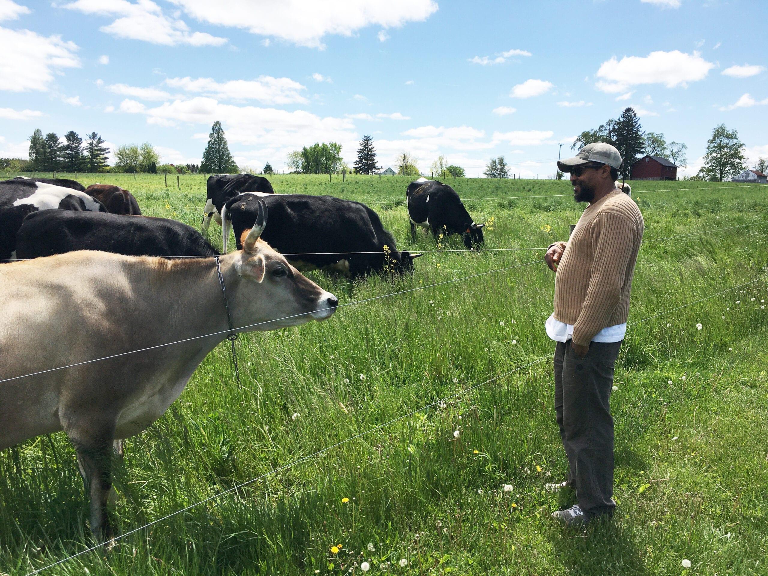 Dairy Grazing Apprenticeship