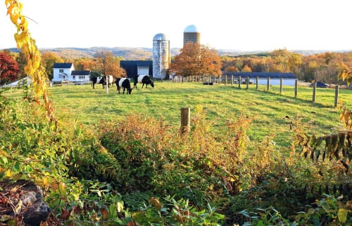 Job Opportunity at Hilltop Hanover Farm in Yorktown, NY
