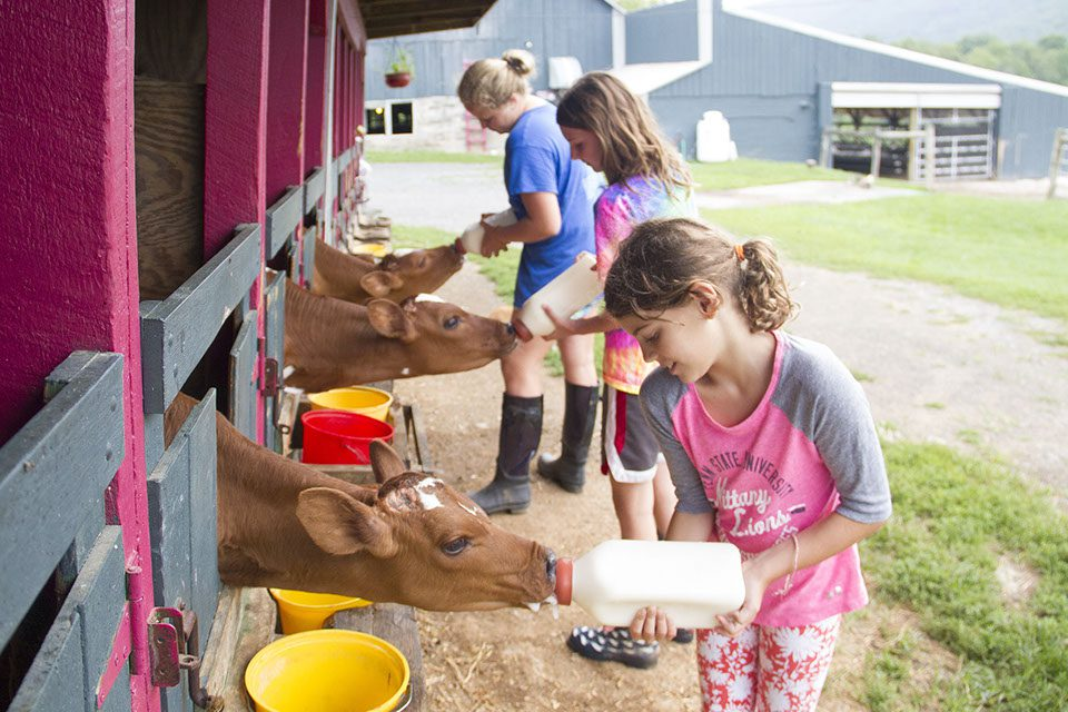 Hameau Farm is hiring an apprentice